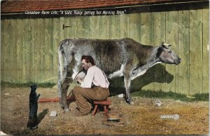 Canadian Farm Life 'Cute Pussy - Morning Drink' Cat Cow 1908 Postcard F52 *as is
