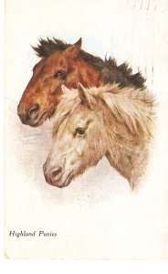 Highland Ponies Nice old vointage English postcard