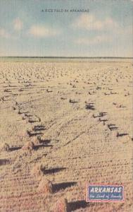A Rice Field In Arkansas