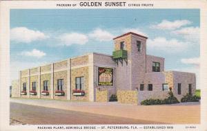 ST. PETERSBURG , Florida , 30-40s; Citrus Packing Plant , Golden Sunset Fruits
