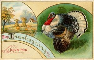 Greeting - Thanksgiving, Turkey