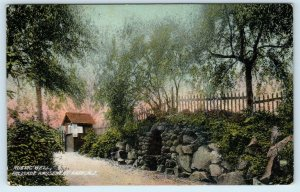 PALISADE, NJ New Jersey  PALISADE AMUSEMENT PARK Rustic Well 1909  Postcard