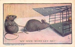Comic~My Wife Won't Let Me~Mouse Pulls Hubby Back From Trap~1907 Artist L