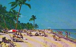 Florida Key Biscayne Colorful Crowded Beach At Crandon Park