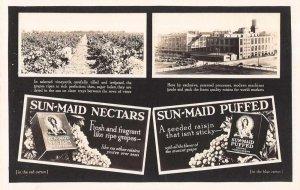 Fresno California Sun Maid Raisin Plant Real Photo Vintage Postcard AA7707