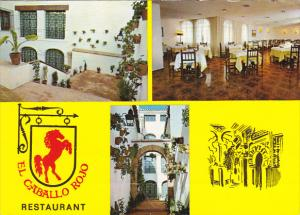 Restaurant El Caballo Rojo Cordoba Spain