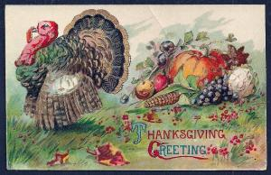 Thanksgiving Greeting Turkey Harvest Foods unused c1910