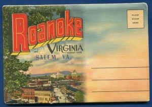 Roanoke & Salem Virginia va Elmwood Park Lake Mill Mountain Postcard Folder