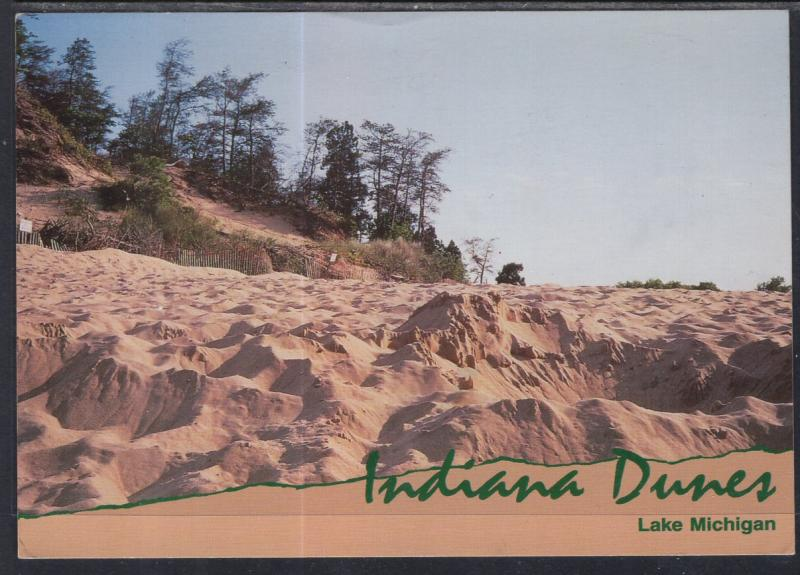 Indiana Dunes,Lake Michagan BIN