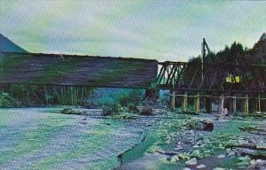 Park Junction Covered Bridge Pierce County Washington