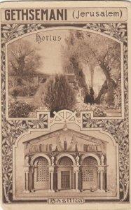 JERUSALEM , Israel , 00-10s ; Garden of Gethsemane, Nortus and Basilica