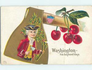 Pre-Linen patriotic YOUNG GEORGE WASHINGTON PICTURED ON LARGE AXE HJ2805