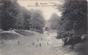BRUXELLES, Bois de la Cambra, Ravin et pont rustique, Belgium,  00-10s