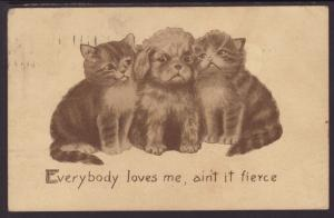 Everybody Loves Me...,Kittens,Puppy,Colby Comic Postcard
