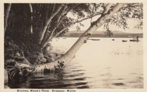 RP: BRIDGTON, Maine, 1920s; Birches, Wood's Pond