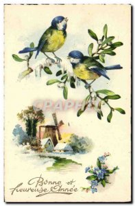 Old Postcard Birds