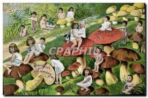 Old Postcard Mushroom Mushrooms Children Babies