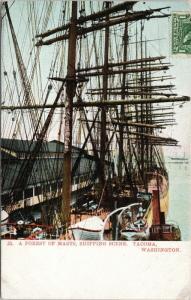 Forest of Masts Shipping Scene Tacoma WA Boats Central News c1907 Postcard E47