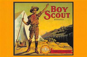 Boy Scout ca. 1915 Linda MacKie, Premium Orange Distributors, Cincinnati-Ohio