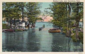 DRYERSBURG, Tennessee, 1910-20s; Reelfoot Lake