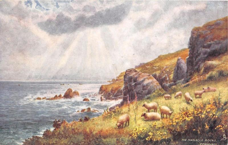 MANACLE ROCKS CORNWALL UK TUCK PICTURESQUE COUNTIES #7117 POSTCARD 1900s