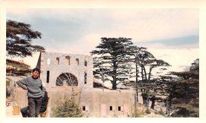 Cedars, Lebanon , Carte Postale writing on back