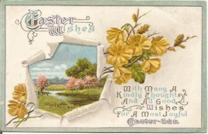 Yellow Flowers and Country Meadow with Creek Scene 1920's Easter Greeting