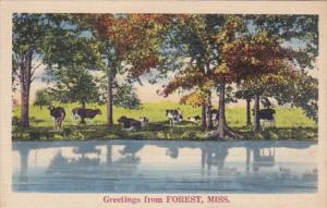Mississippi Greetings From Forest