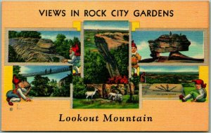 Lookout Mountain, Tennessee Postcard VIEWS OF ROCK CITY GARDENS Linen c1940s