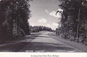 RP, Road Scene, Greetings From Indian River, Michigan, PU-1984
