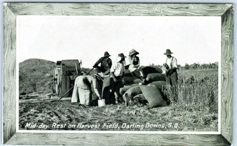 DARLING DOWNS~QUEENSLAND, Australia HARVEST FIELD  1915  P.P.I.E. Expo Postcard