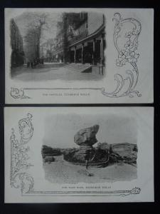 Kent 2 x TUNBRIDGE WELLS The Pantiles & Toad Rock c1906 Art Nouveau Postcard