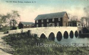 Old Stone Bridge Cortland NY Unused