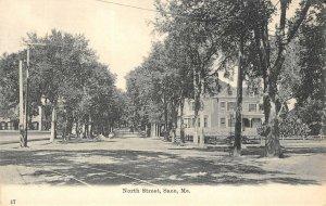 North Street Scene, Saco, Maine Pre-1908 Vintage Postcard