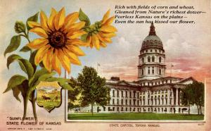 State Flower & Capitol - Kansas, Sunflower