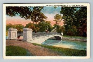 Cleveland OH, Bridge In Brookside Park, Vintage Ohio Postcard
