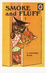 Smoke & Fluff Cats Ladybird Childrens First Edition Book Postcard
