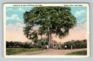 Arbol de la Paz Santiago de Cuba, Peace Tree, San Juan Vintage Postcard