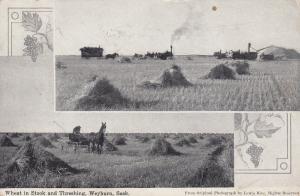 WEYBURN , Saskatchewan , Canada , 1900-10s ; Wheat in stock & Threshing