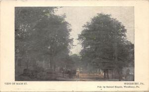 Woodbury Pennsylvania~View of Main Street~Horse & Buggy~Publ y S Stayer~1908 Pc