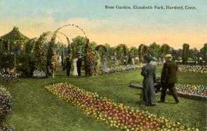 CT - Hartford. Elizabeth Park. Rose Garden