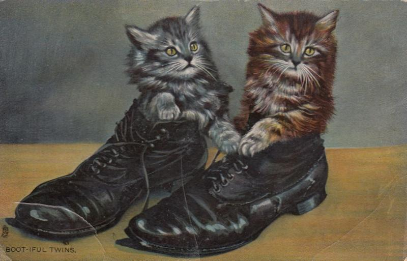 2 cats in shoes , 1911 ; TUCK 8111