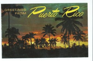 Postcard Greetings From Puerto Rico Night View VPCO1.