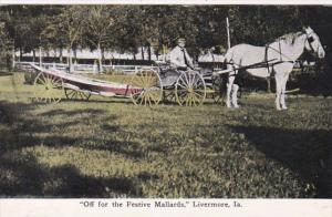 Iowa Livermore Off For The Festive Mallards