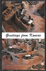 Kansas, Salina, Indian Burials, Greetings, unused