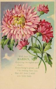 Missouri Hardin I Am Here With Carnations 1909