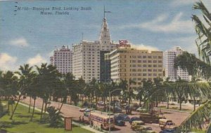 Florida Miami Biscayne Boulevard Looking South 1956