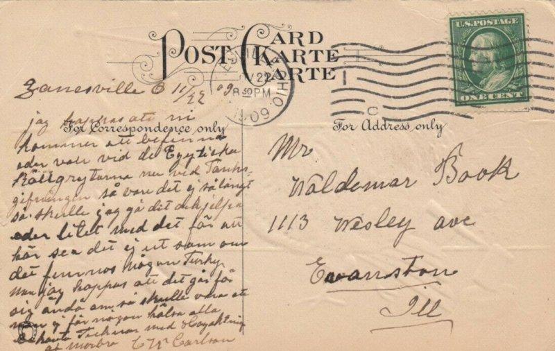 THANKSGIVING, PU-1909; Greetings, Wild Turkey, Boy holding banner