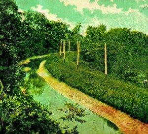 Horse Shoe Curve Robinson Park Fort Wayne IN Rail Line UNP 1910s Postcard