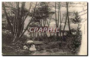 Varengevilles Old Postcard Allee trees leading to the sea